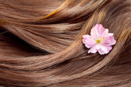 Manage your Dry Hair with Natural Products