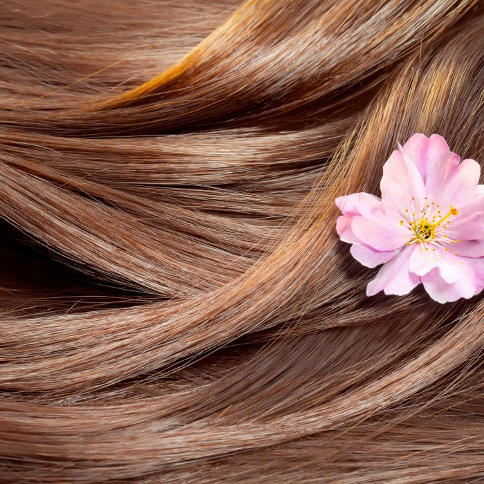 Natural Hair Care Products for Dry Hair